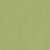 579 Olive Green