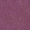 576 Magenta