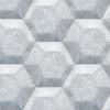 Hexagon 442